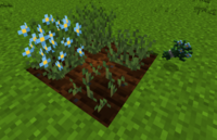 Flaxcrops