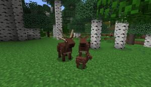 Deer family Aww B27