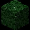 LeavesLebethron
