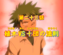 The Law of Ueki vs the Robert's Ten