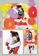 Final Live Pamphlet 31