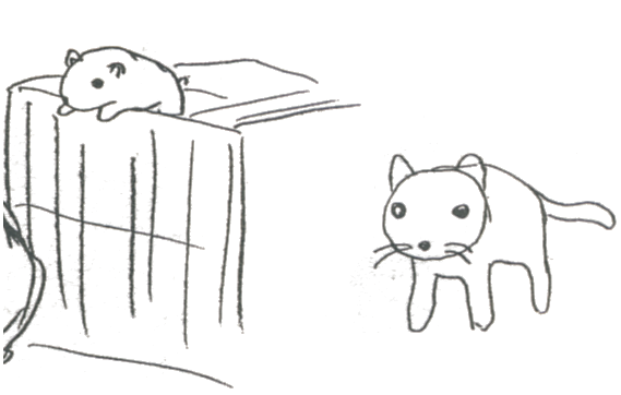 File:Tama the Cat Concept.png