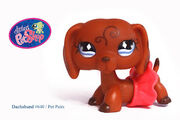 Littlest Pet Shop -640