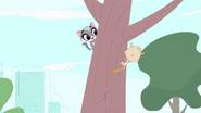 Sweet Cheeks in the tree