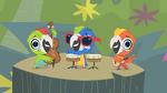 Macaw Jazz Trio