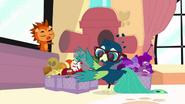 Basil finishes organizing