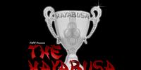 Hayabusa Cup