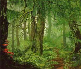 Drúadan Forest