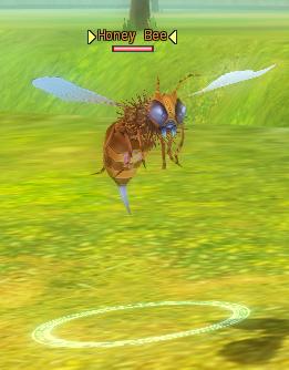 File:6-Honey Bee.png