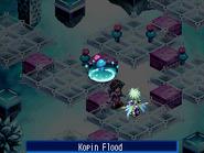 Kopinflood-1