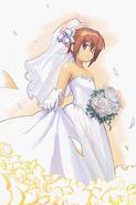 Popwedding