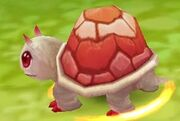 High turtle