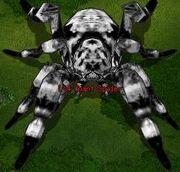 Giant Spider (Level 4) (MiniBoss)