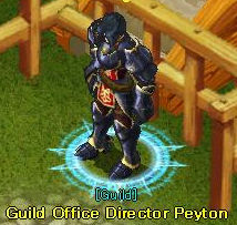 NPC Guild Office Director