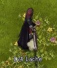 Lache (Level 4)
