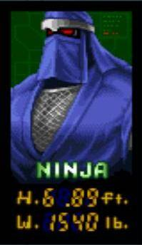 1240299-ninja warriors ninja mugshot