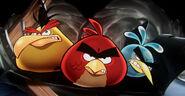 Angry-Birds-Rio-iPad-3-PC-Wallpaper-Yellow-Red-Blue-Bird