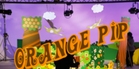 Orange Pip