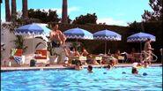 Don pool kids megan tomorrowland