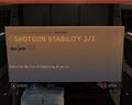 Shotgun Stability 3-3.jpg