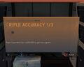 Rifle Accuracy 1-3.jpg