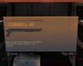 Cornell 40.jpg