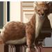 Item weasel 01