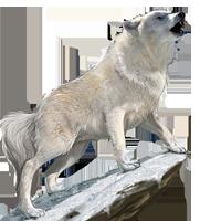 Huge item tundrawolf 01