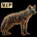 Item aardwolfhyena 01