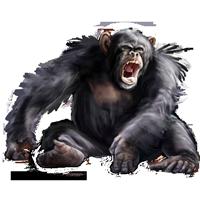 Huge item chimpanzee 01