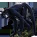 Item spidermonkey 01