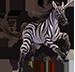 MW XX Uni Zebra