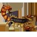 Item europeanscorpion 01