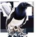 Item jailbird 01