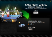 CageFightArenaLevel3