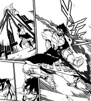 Rohroh fighting