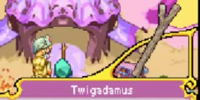 Twigadamus