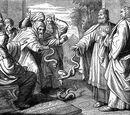 Превращение змеи в палку