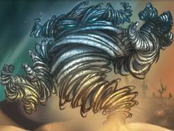 Swirling Orshaa MND