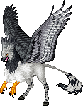 Harpy Eagle Hippogryph m