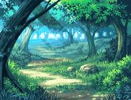 Negimaforestarea
