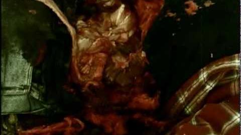 Nightmare Alley Trailer (DVD 08 10 2010) - Brain Damage Films