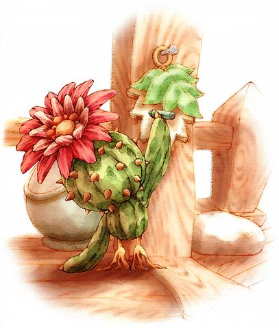 File:CactusJottings.png