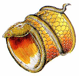 File:CobraBracelet.png