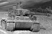 Tiger tank 23