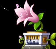 NPC Music Box