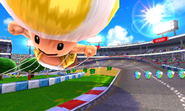 Toad Circuit
