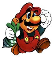 Mario SMB2-2