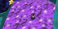 Flowerside Patch