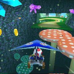 Toad gliding on Wii Mushroom Gorge.